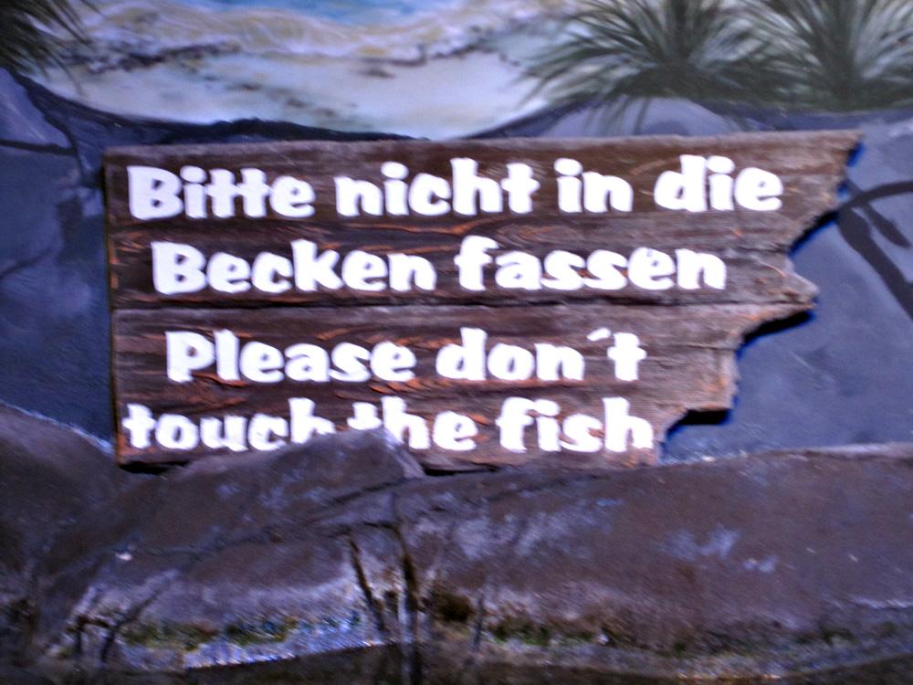 Aquadom Sea Life Berlin - Venligst rør ikke fiskene